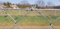 tüskésdrót, szögesdrót, vezérdrót, kerítésdrót, kerítésfonat, drótkerítés, huzal, feszítőhuzal